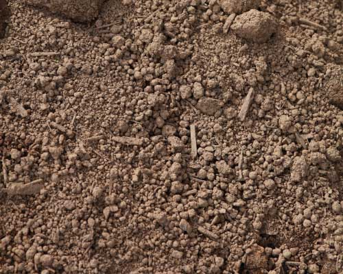 Shredded Screened Premium Top Soil