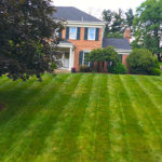 lawn-maintenance-south-hills-pa